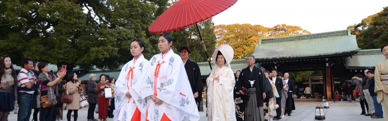 Meiji Jingu - Biểu tượng bất tử trong lòng Tokyo hiện đại