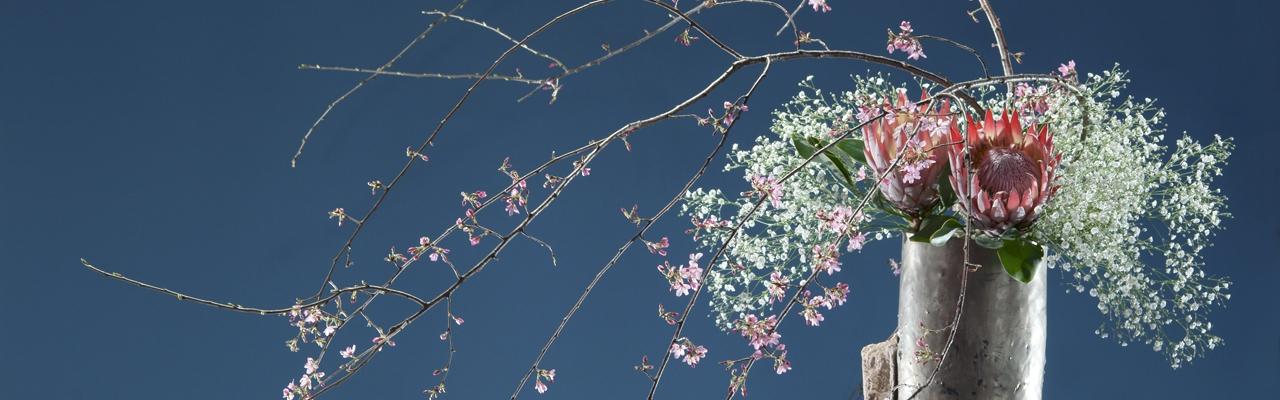 花を愛でる、和の心・いけばな