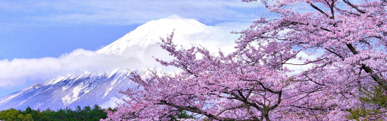 """Lễ hội """"Feel Japan with Kilala 2015"""" đưa Nhật Bản đến gần bạn hơn"""