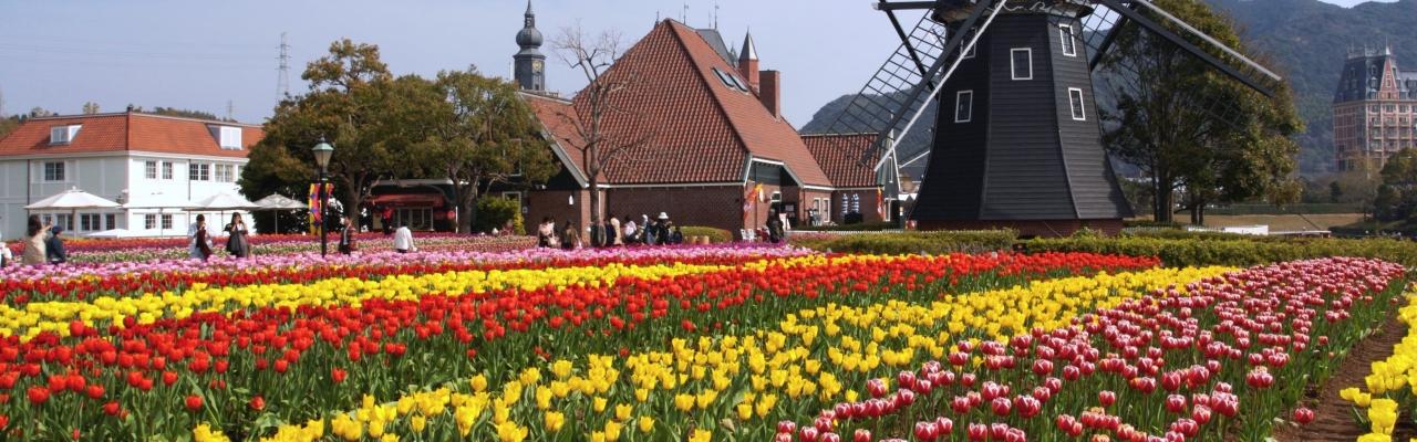 花咲き誇る春の九州