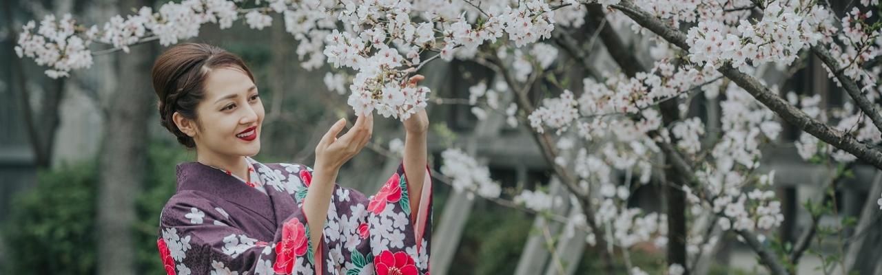 """Kinh nghiệm ngắm hoa """"chuẩn"""" người Nhật Bản"""