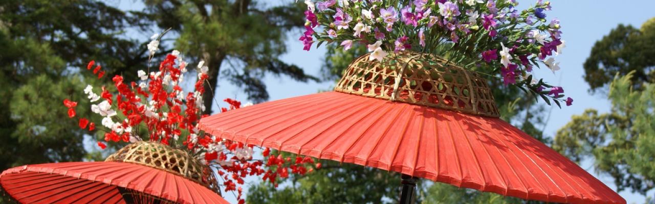 Aoi Matsuri - Lễ hội hoa thục quỳ