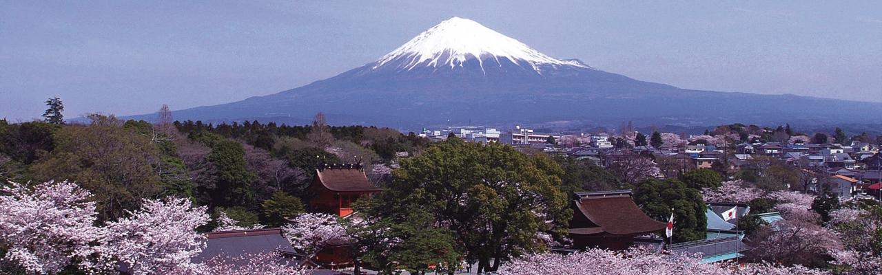 Shizuoka - Không chỉ có núi Phú Sĩ