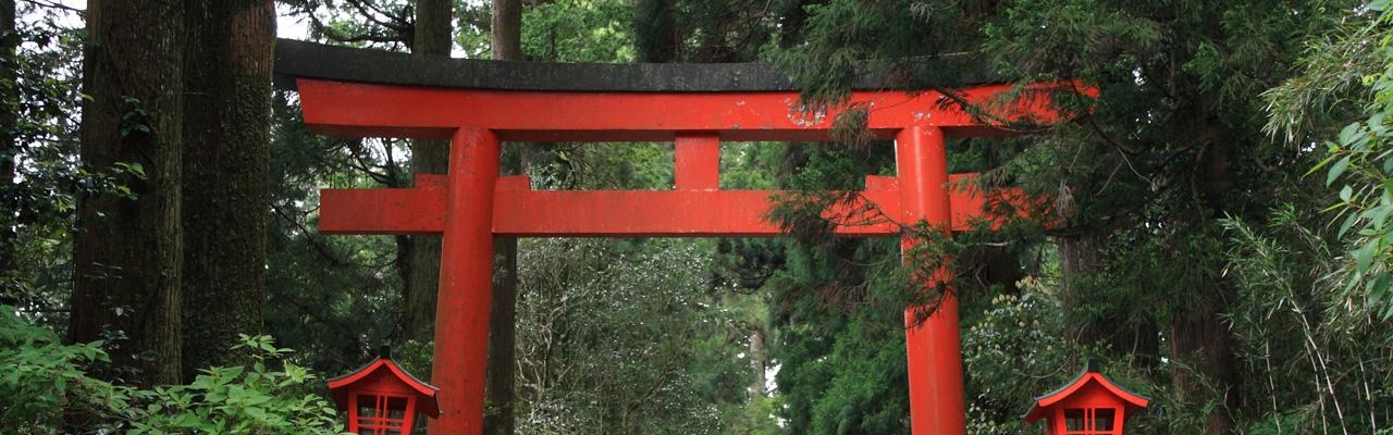 Những chiếc cổng Torii ở xứ Phù Tang