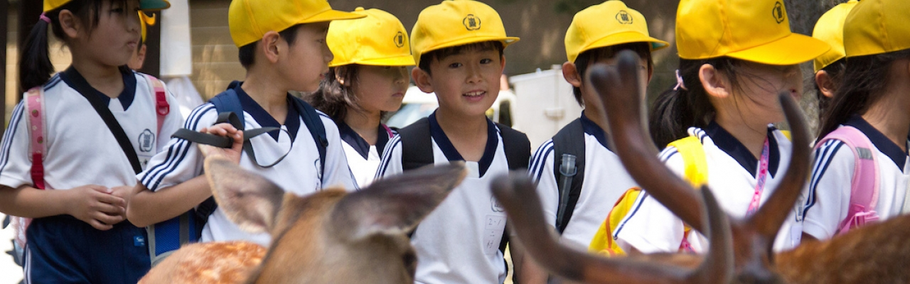 Nara - thành phố thân thiện với trẻ em