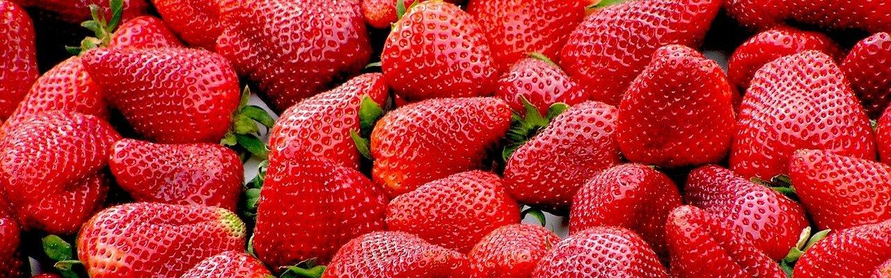Thưởng thức trái cây bốn mùa ở Nhật Bản