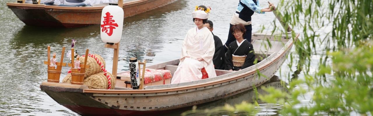 Thưởng lãm Lễ hội hoa Diên vĩ Suigo-Itako lần 65