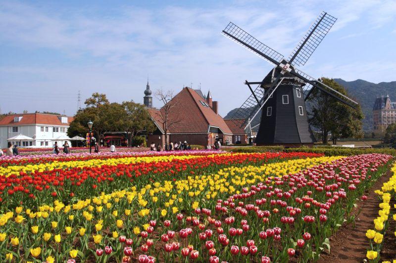 museum molen