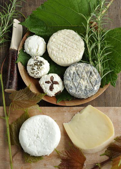 チーズ作り