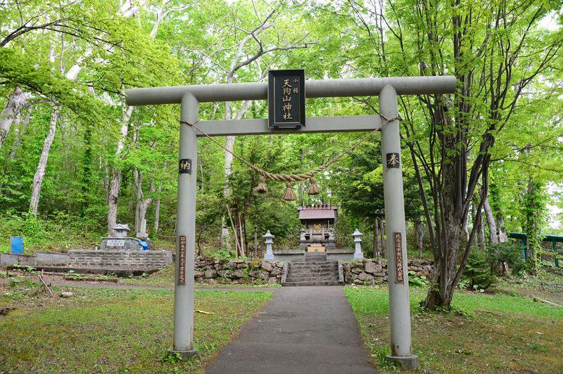 torii shinmei