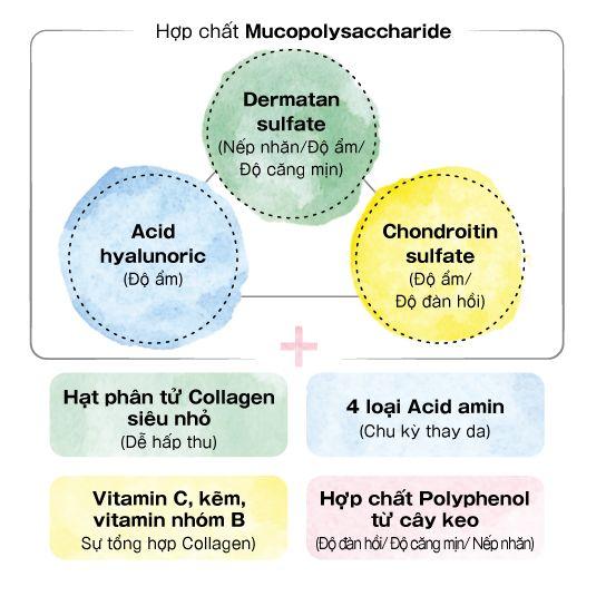 thành phần collagen