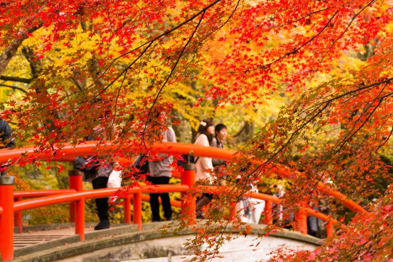 cầu Kajikabashi