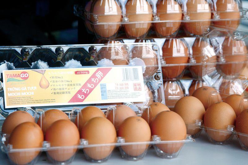 trứng gà Mochi Mochi