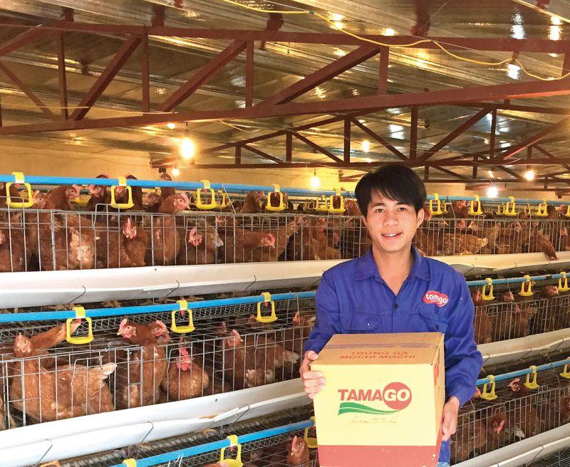 công nghệ chuồng lạnh và kín Tamago