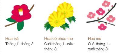 hoa mùa đông