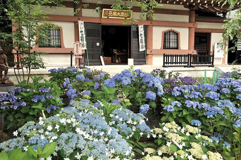 chùa Hase-dera