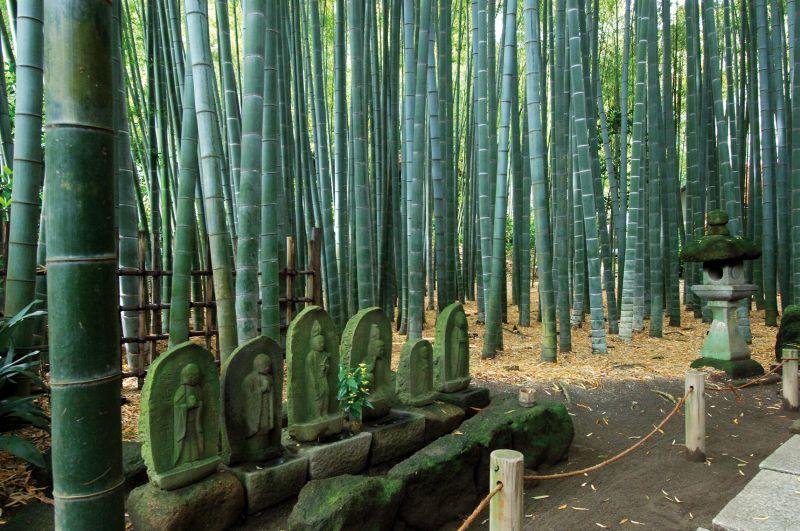 chùa Hokoku-ji