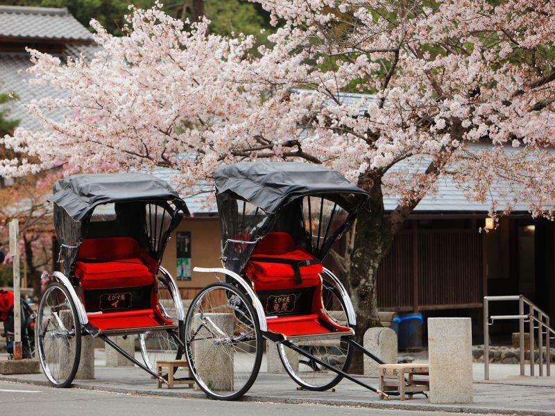 xe kéo Nhật Bản