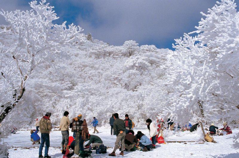 Chơi núi ngắm tuyết