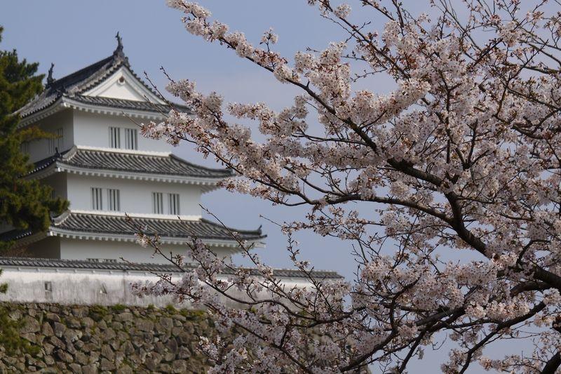 Shimabara-jo