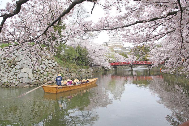 thuyền ngoạn cảnh lâu đài Himeji