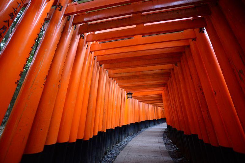 cổng Torii ở Fushimi Inari