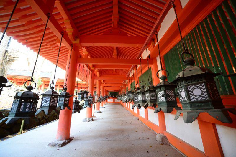 khoảng 3.000 chiếc đèn ở đền Kasuga Taisha