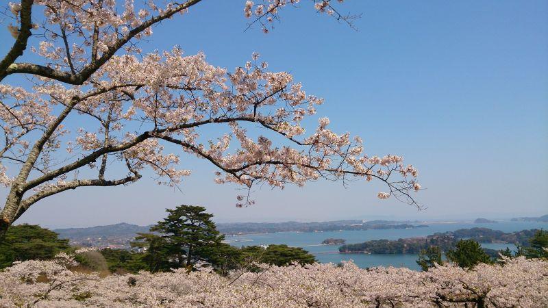 vịnh Matsushima