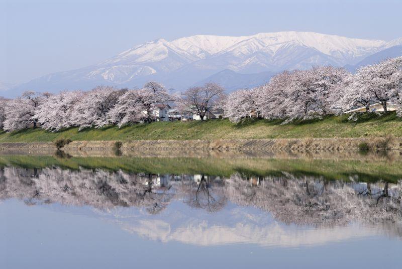 一目千本桜と蔵王連峰