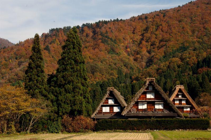 làng Shirakawago