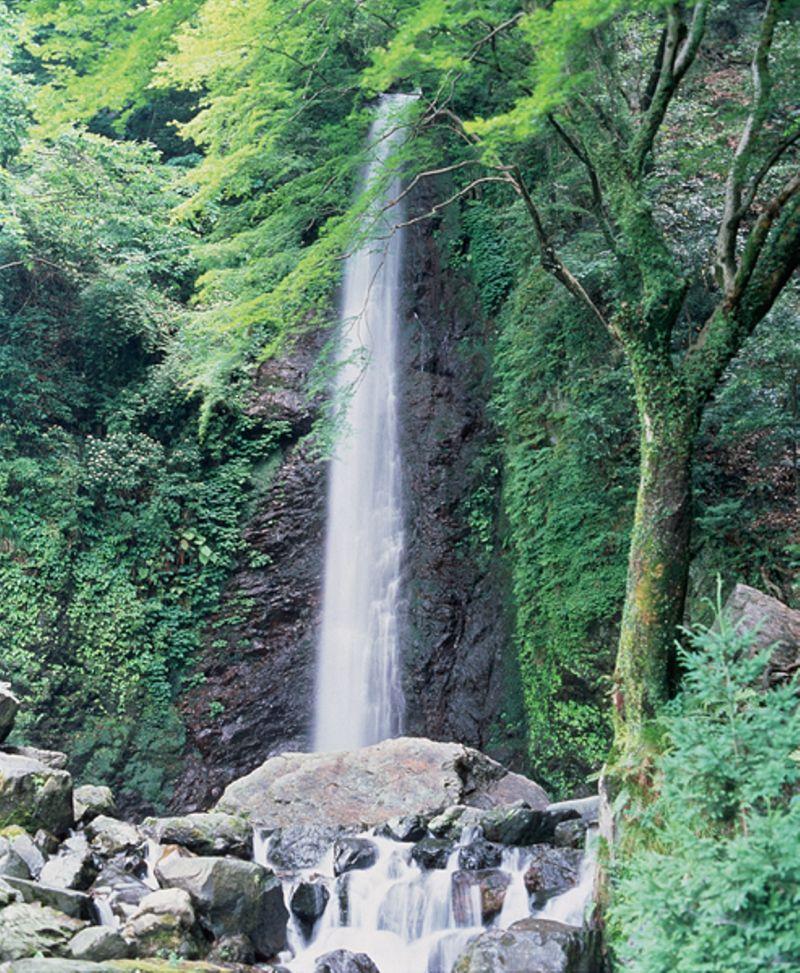 thác Yoro