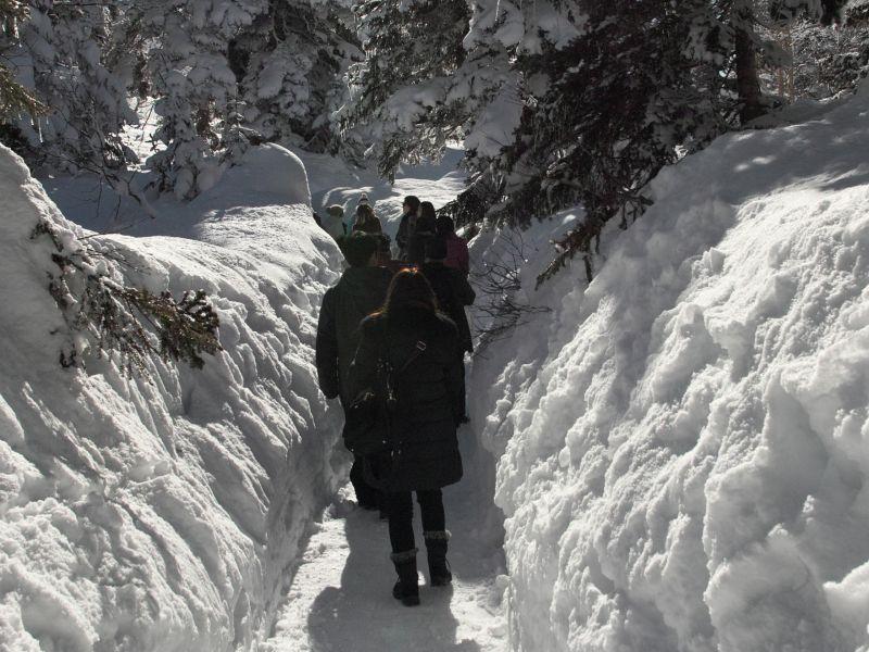 hành lang tuyết trắng