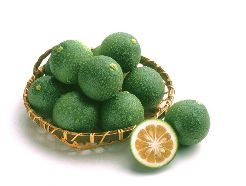 trái Kabosu
