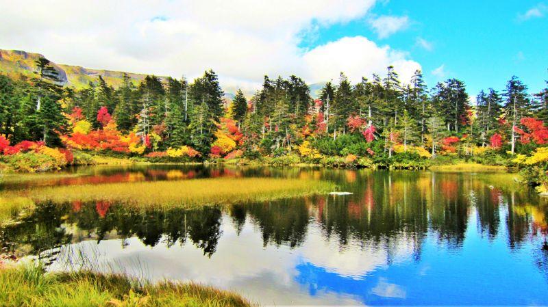 hàng cây in bóng xuống mặt hồ xanh màu trời