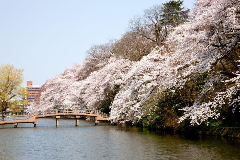 công viên thành Takaoka