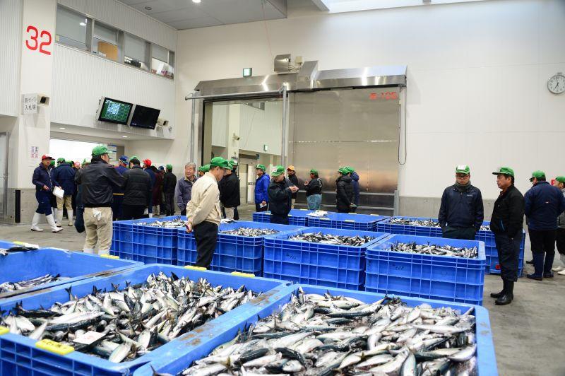 chợ cá shin ishinomaki