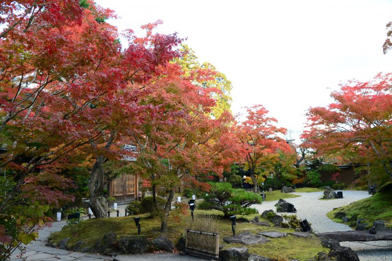 vườn thiền chùa Entsuin