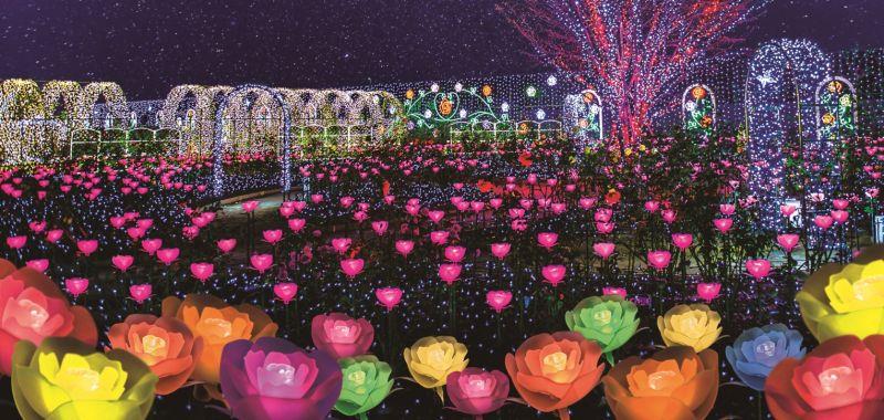Vườn hoa Ashikaga