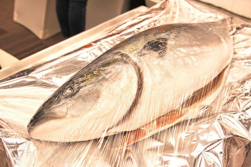 kết nối thương mai về hải sản JETRO