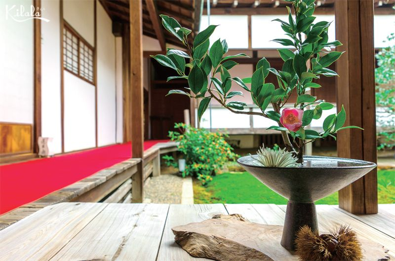 nghệ thuật Ikebana Nhật Bản