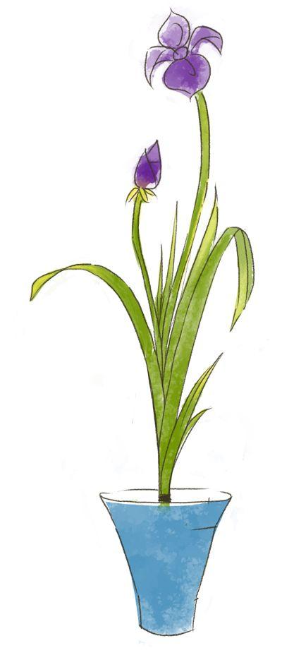 phong cách Shoka trong Ikebana