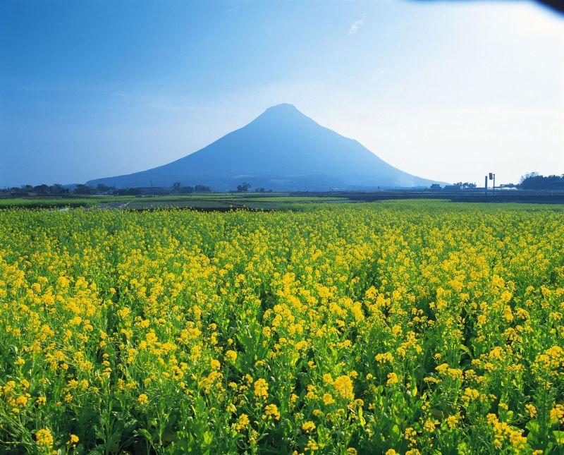 ibusuki, kagoshima