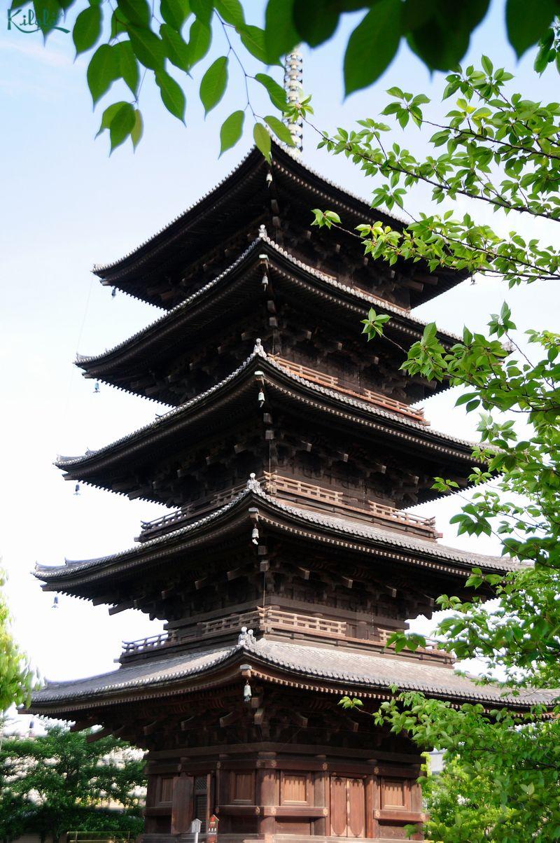 日本一高い木造の塔:東寺の五重塔