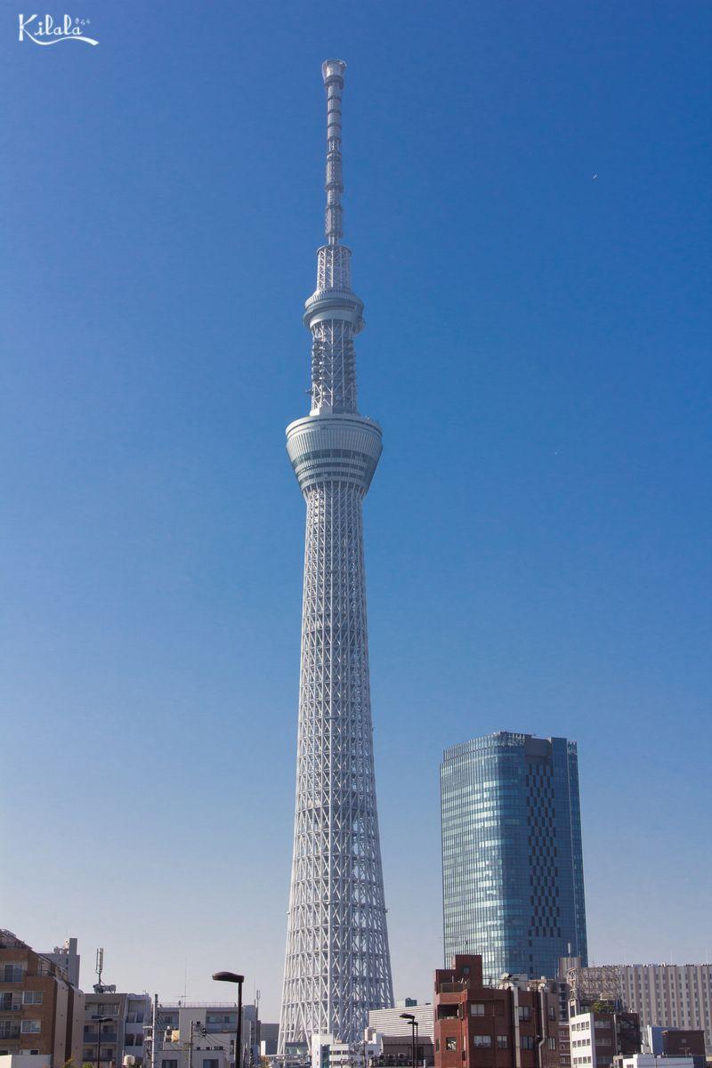 日本一高いタワー:東京スカイツリー