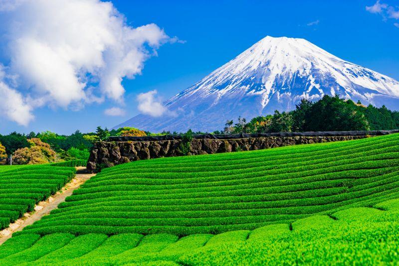 Núi Phú Sĩ tháng 5