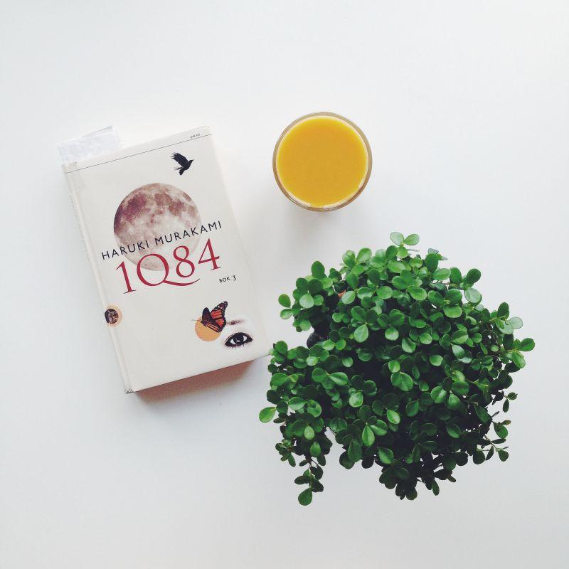 Review truyện 1Q84