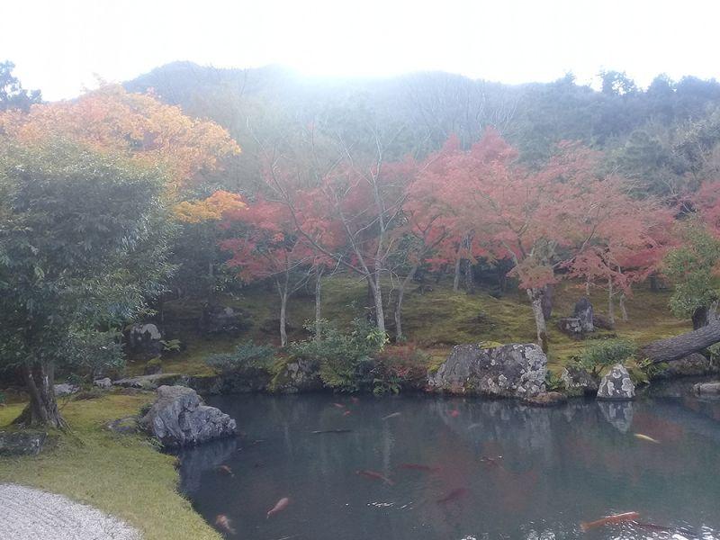 Vườn Tenru-ji
