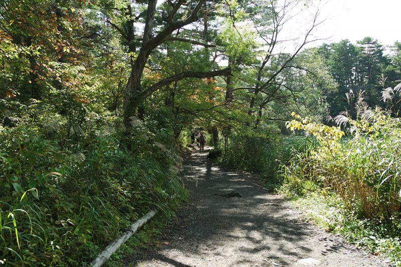 五色沼と周辺の湖沼を結ぶ脇道