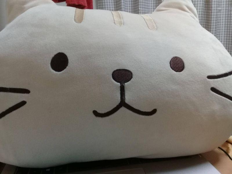 Gấu bông hình mèo