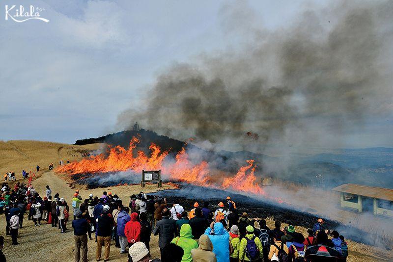lễ hội đốt cỏ Yamayaki